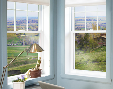 hung exterior windows